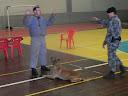 Apresentação dos cães da Brigada Militar