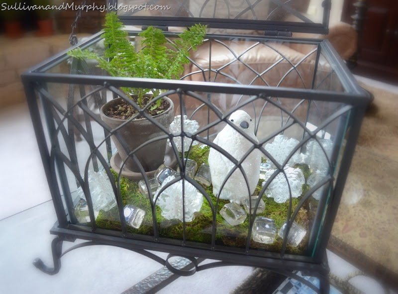 glass & iron terrarium