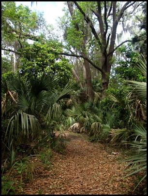 Gainesville to Hawthorn Bike Trail 047