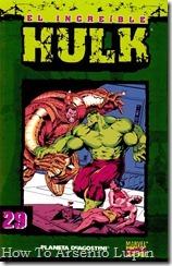 P00029 - Coleccionable Hulk #29 (de 50)