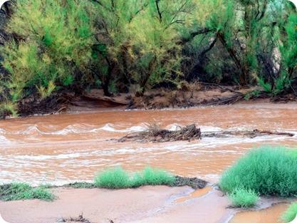 colarodo river