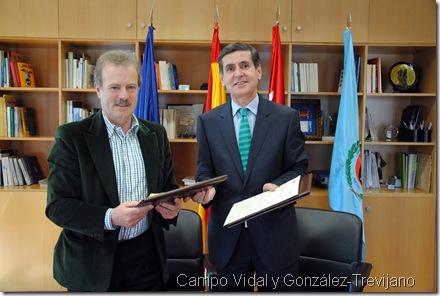 Campo Vidal y González-Trevijano
