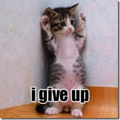 give up cat