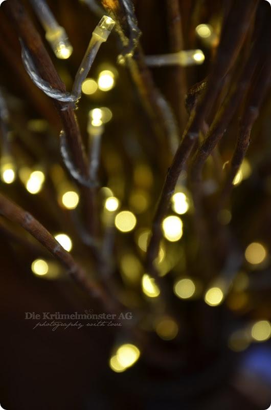 Lichterglanz - Weidenlämpchen (5)