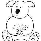zviratka-koala.jpg