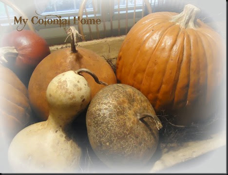 Gourds in trencher