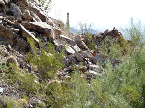 HikeinSanTanRegionalPark-26-2012-12-5-14-03.jpg