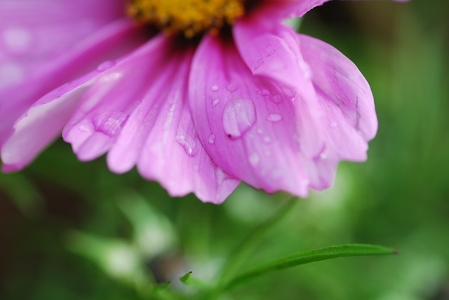 Droplet on cosmos