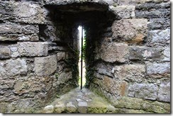 Beaumaris Castle mossy window