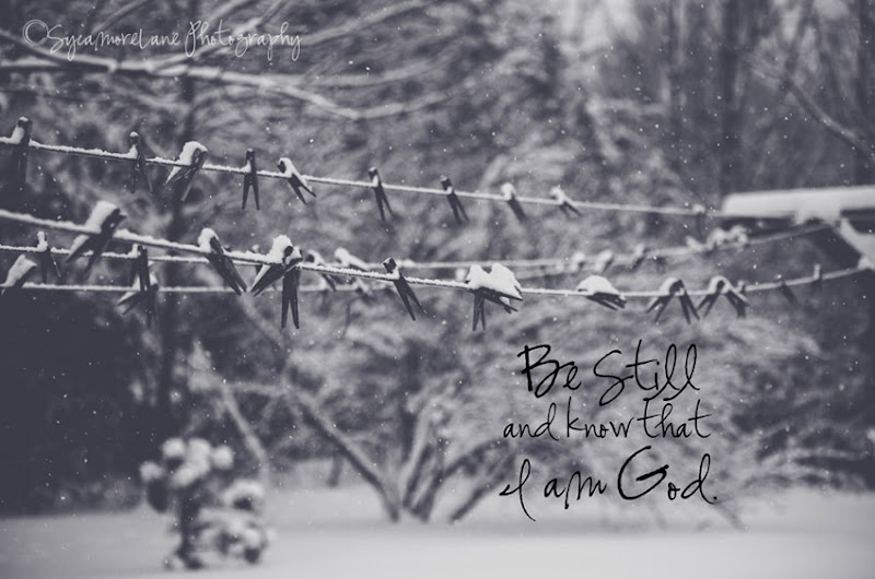 Psalm 46;10-SycamoreLane Photography-web