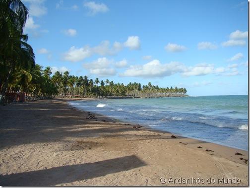 Praia do Marceneiro Rota Ecológica de Alagoas