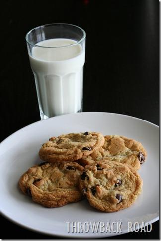 cookie 031