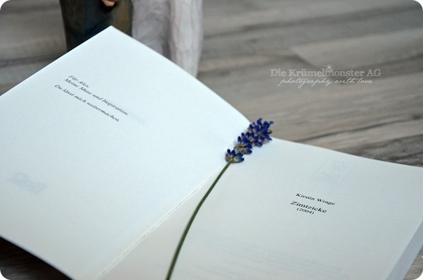 ZIMTZICKE Printausgabe (05)