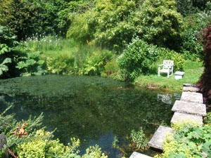 Chartwell Pond with Churchill s Chair