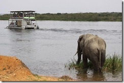 boat ride with elephants