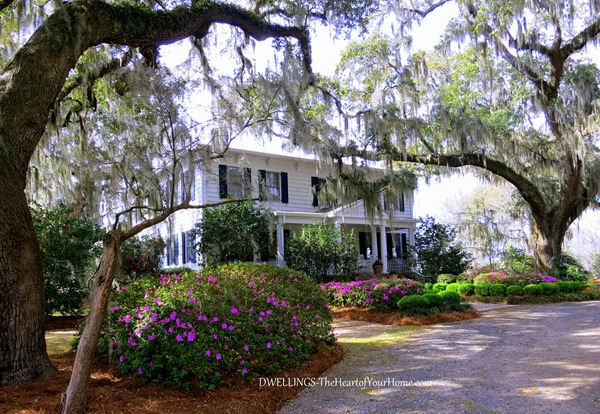 WAVERLY PLANTATION