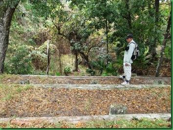 Pat's Island Trail 031
