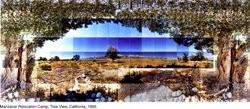 Manzarar Tree View Page1 651x285