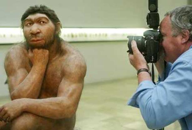Expertos-explican-humanos-dejaron-arboles_PREIMA20121025_0323_38