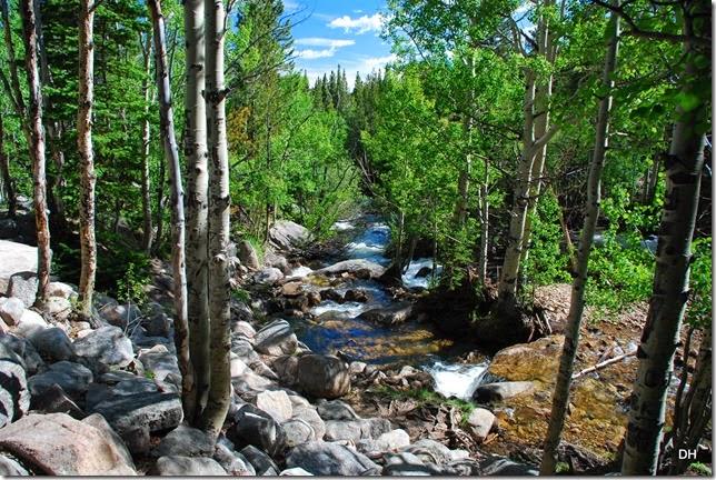 06-23-14 A RMNP Alberta Falls Loop (118)