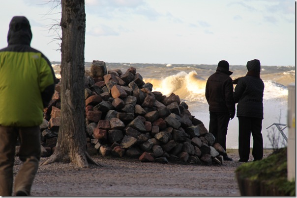 Styczniowe morze i bułeczki z zurawiną i marcepanem (1)