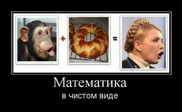 CC Photo Google Image Search Source is cdn trinixy ru  Subject is tymoshenko plus bread