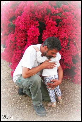 daddy cindy flower bush hug