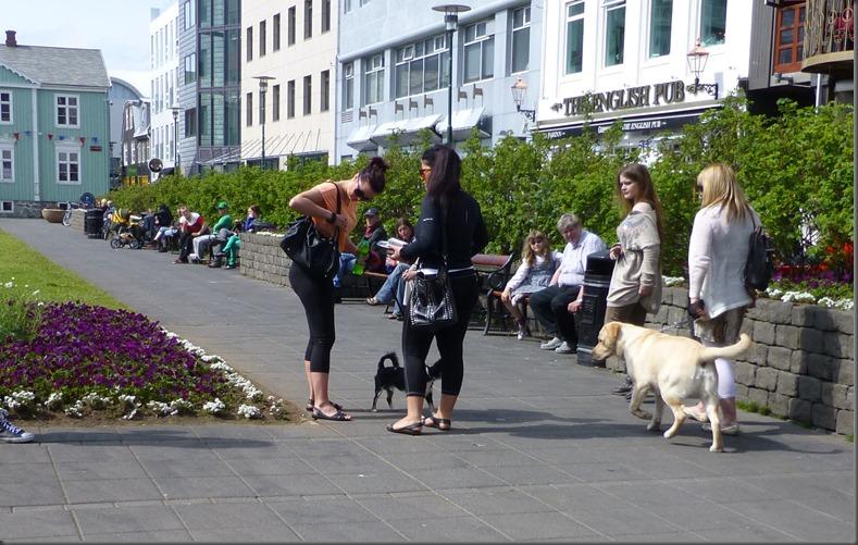 Reykjavik_2-13 121