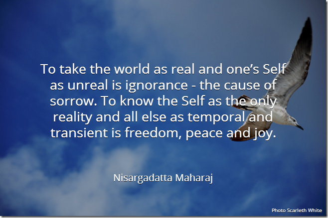 To take the world as real and one's Self as unreal is ignorance - the cause of sorrow. To know the Self as the only reality and all else as temporal and transient is freedom, peace and joy. [Nisargadatta Maharaj]