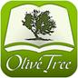 Olive Tree 128x128