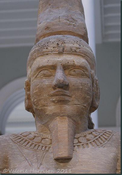 24-Egyptian