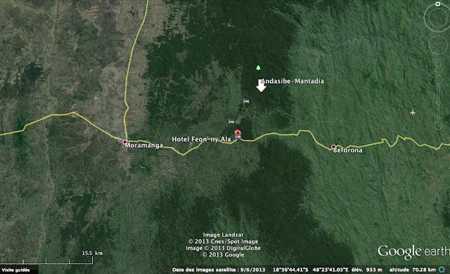 Situation de l'Hôtel Feon'ny Ala dans le Parc d'Andasibe-Mantadia