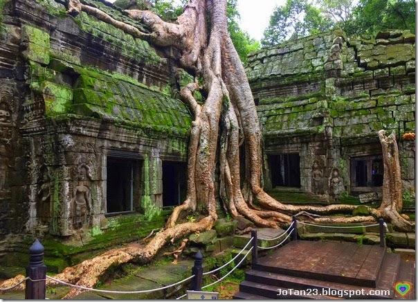 ta-prohm-siem-reap-cambodia-jotan23 (2)