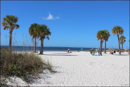 Fred Howard Park beach