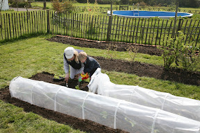 Easy Poly Tunnel - Easy access to plants