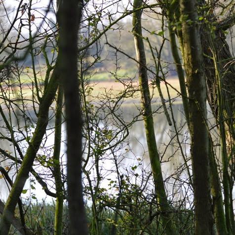 Saddington Reservoir