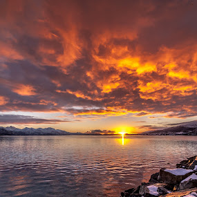 arctic sunset by Benny Høynes - Landscapes Sunsets & Sunrises ( winter, cloudes, sunset, sea, arctic, norway, relax, tranquil, relaxing, tranquility )