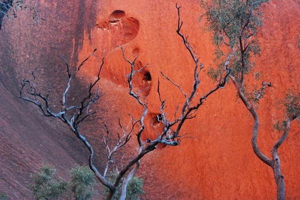 Uluru close up