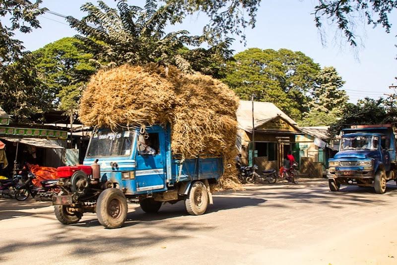 bullock rural