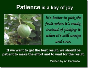 Patience is a key of joy
