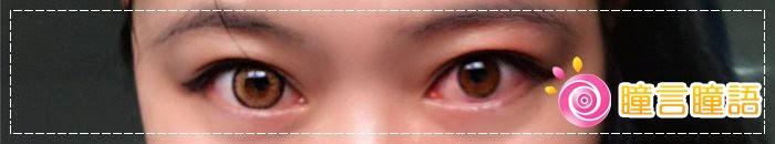 韓國GEO隱形眼鏡-GEO Holicat 荷麗貓仙女咖(Barbie Cat)6