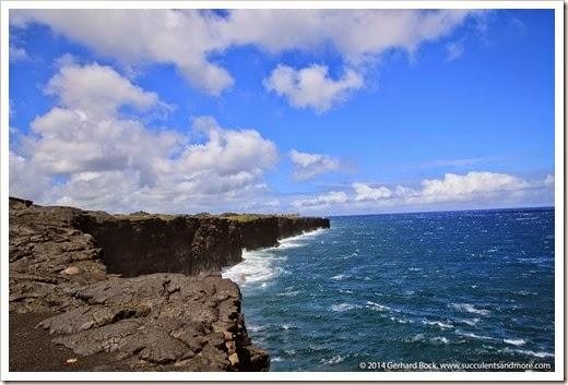 140724_HawaiiVolcanoesNP_0070