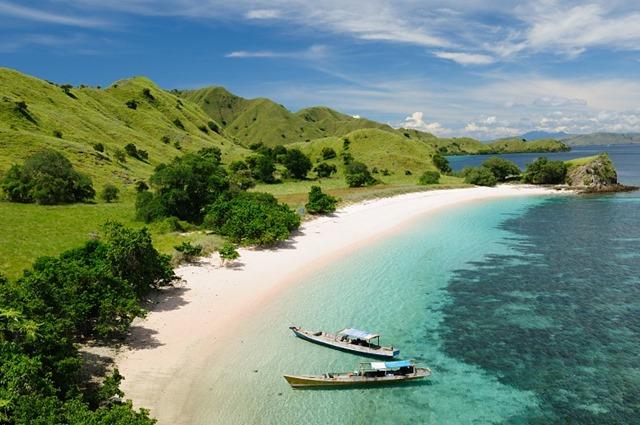 Spiaggia rosa Komodo Indonesia