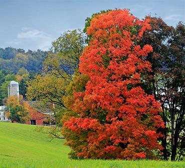 fall2012 Spring PA