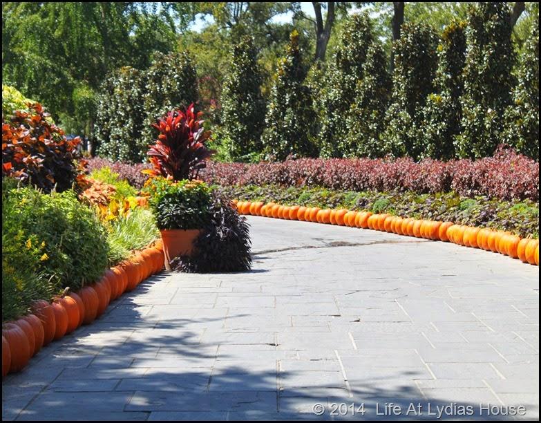 Dallas Arboretum - pumpkin festival-pumpkin walways 2