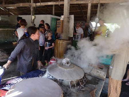 Imagini Delta Mekongului: paste de orez
