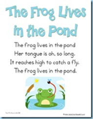 Pond Songs Frog