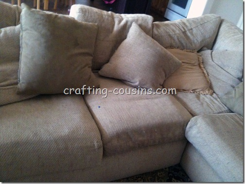 Pillow Shams (7)