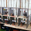 Poultry 003.jpg