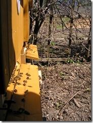 Přítel včelař Dostal UNO30,4,2012 037